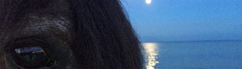 Freizeitreiten Hopp - Mondscheinausritt