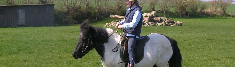 Freizeitreiten Hopp - Ponyführen