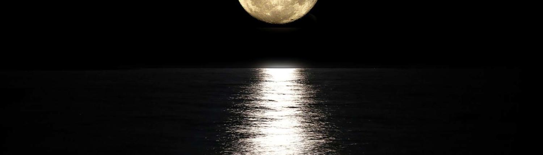 Mondscheinausritt